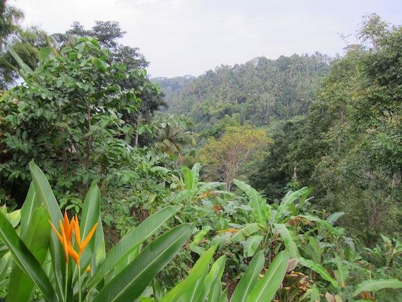Amandari_Bali_Resort44