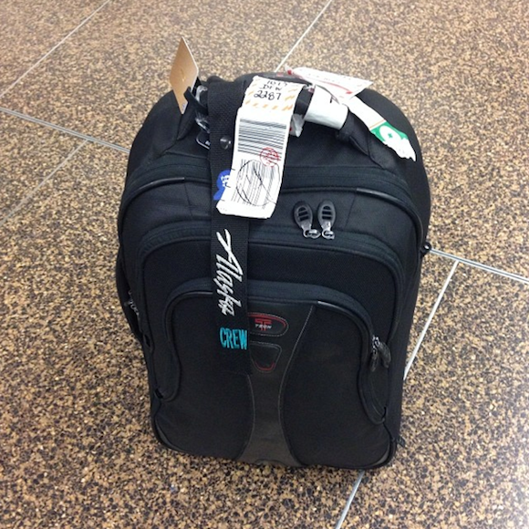 Gate Checked Bag