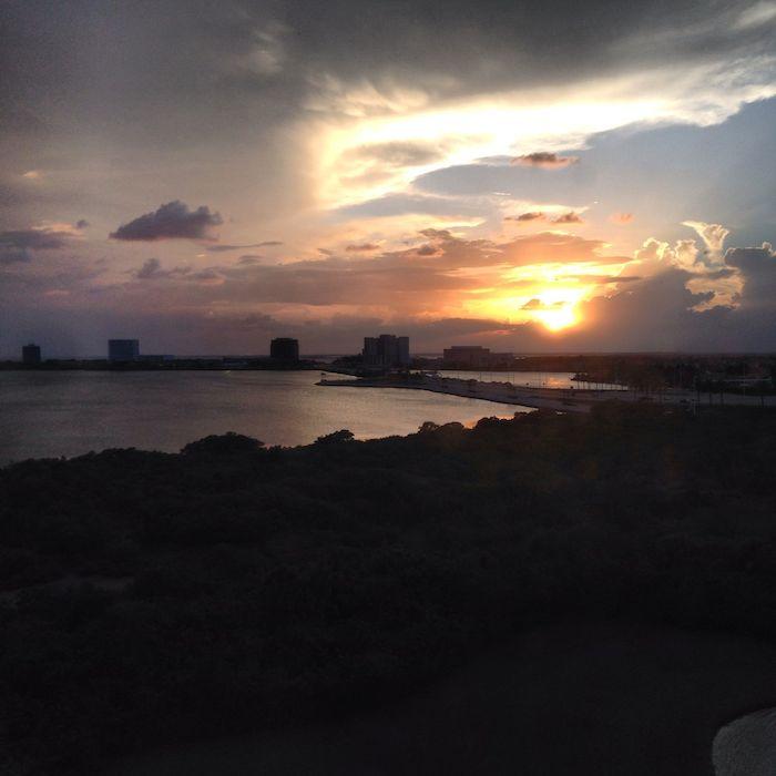 Grand Hyatt Tampa 24