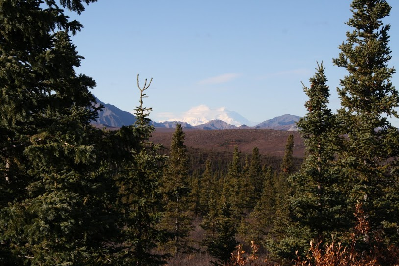 Mt. McKinely, highest point in North America.