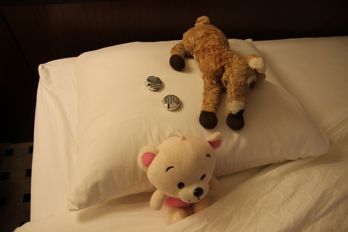 Turn-down service included chocolates for deer and zig-zag. Not sure why Tigey stayed at home on this trip.
