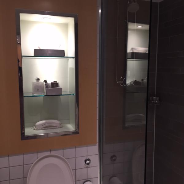 Andaz King bathroom