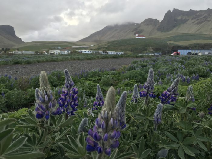 Vik, Iceland's southernmost town.