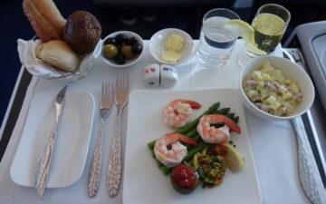 Azerbaijan Airlines 787 Business Class 7