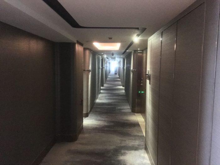Roal Plaza Hotel corridors