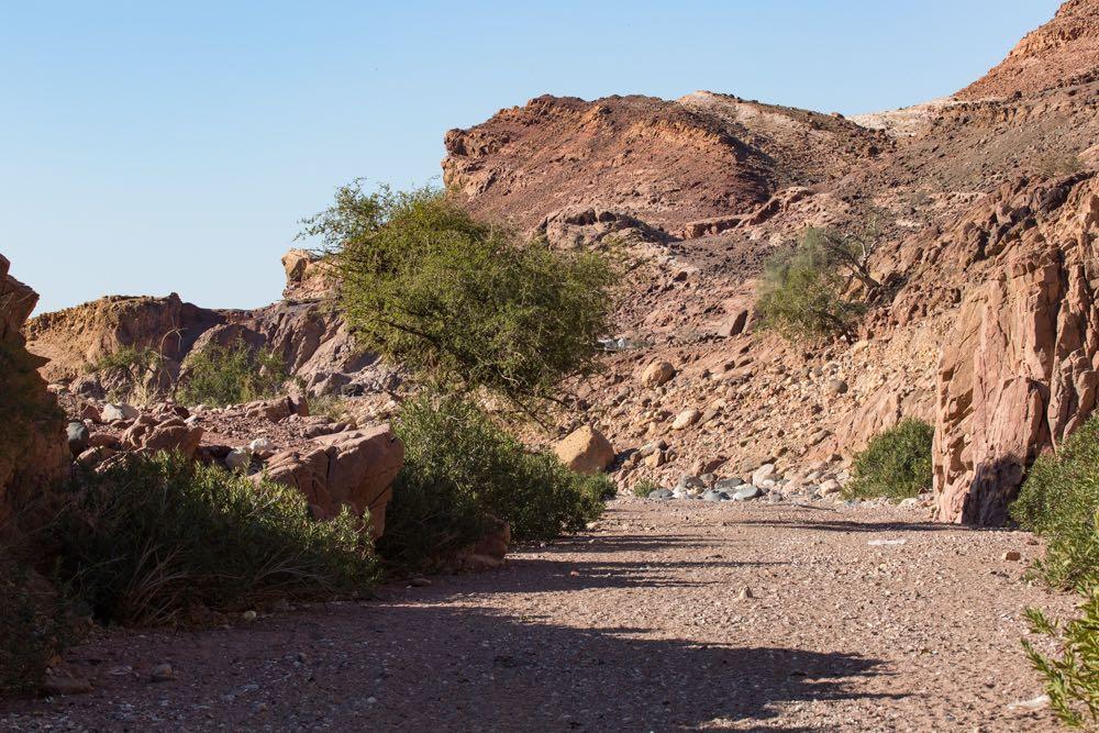 Dana Biosphere Reserve 02