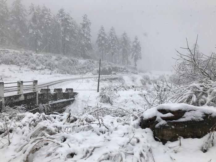 Bhutan-Snow