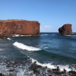 Four Seasons Lanai – 115