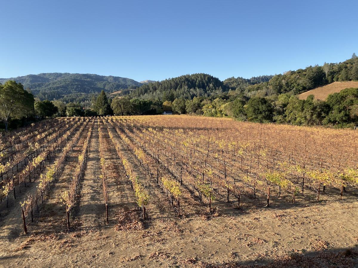 Las Alcobas Napa Valley 31