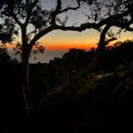 Alila Ventana Big Sur – 102