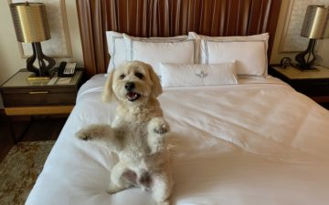 The Ben Hotel West Palm Beach – 22