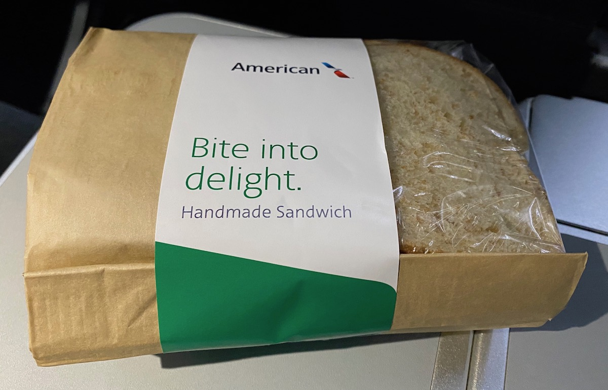 Review American Airlines Main Cabin Extra 737 One Mile
