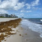 Four Seasons Surfside – 6